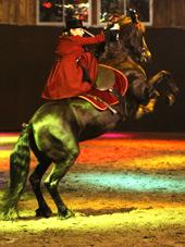 Des Chevaux dansent pour l'indépendance le samedi 11 aout 2012